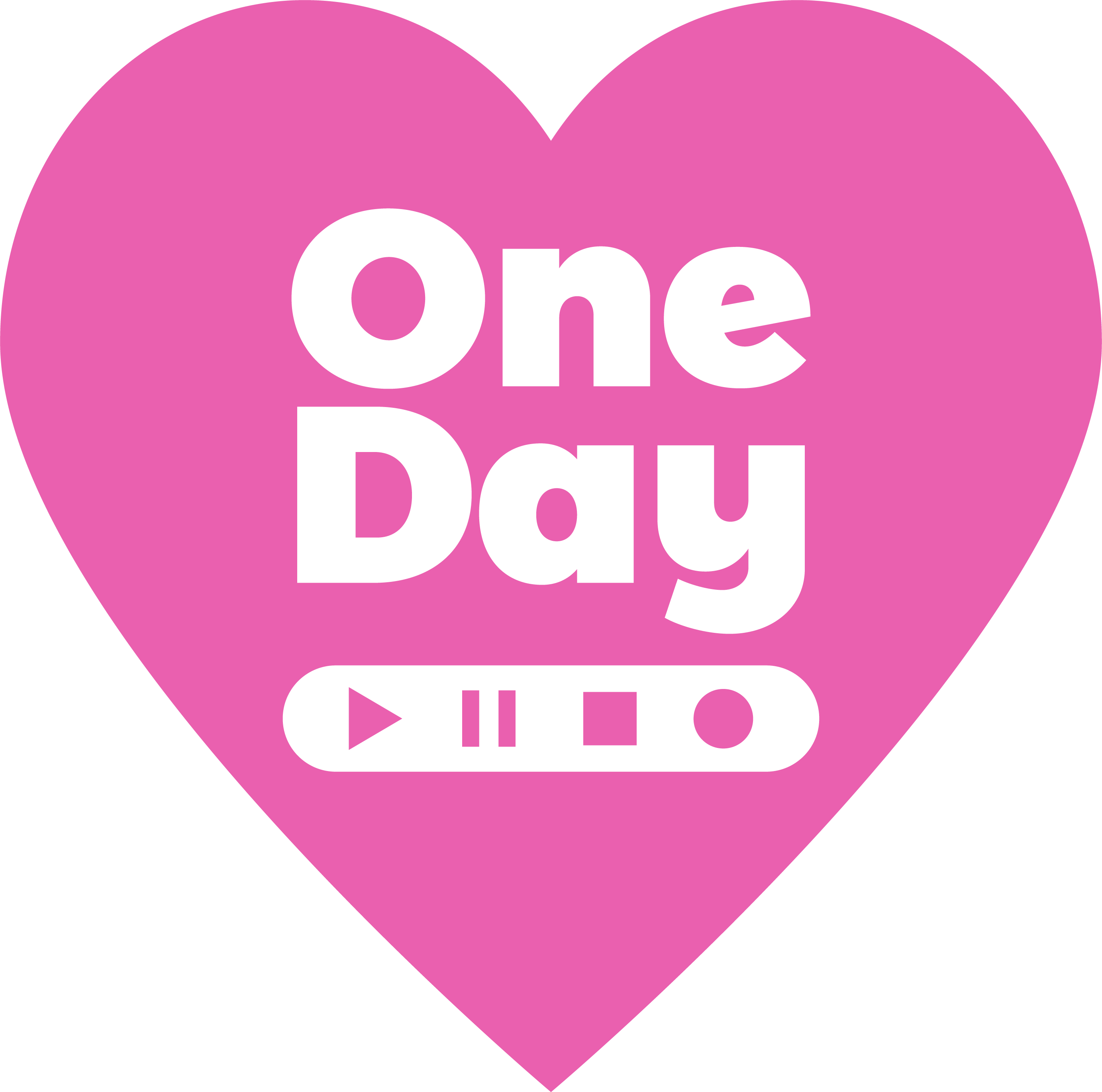 Visdom-One-Day-Logo-New-Pink